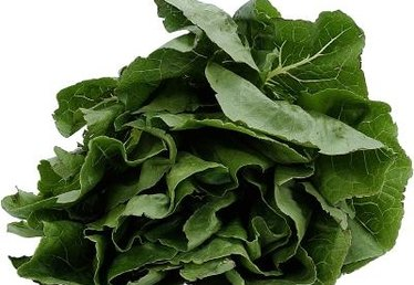How to Stop Spinach From Bolting