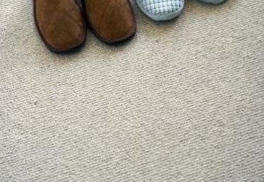How to Check for Fleas on a Carpet