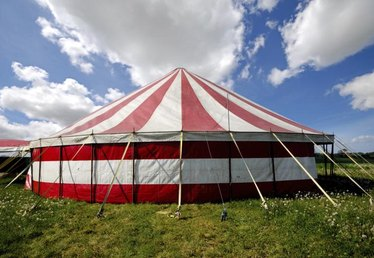 How to Host an Adult Circus Theme Party