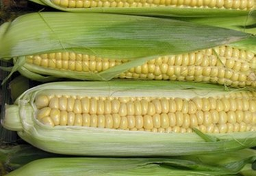 How to Roast Corn in Ovens