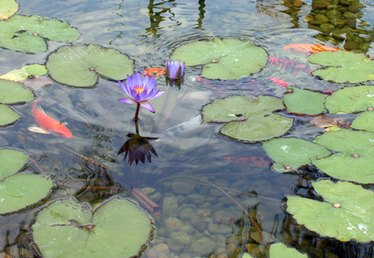 How to Repair Preformed Molded Ponds
