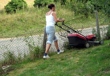 What Is the Best Lawn Mower?