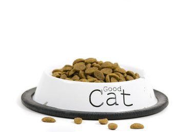 List of Foods Bad for Cats