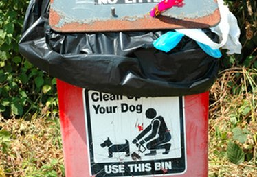 Rules for Curbing Your Dog