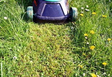 How to Convert a Lawn Mower Into a Brush Mower