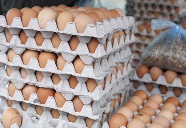 What Are Fortified Eggs?