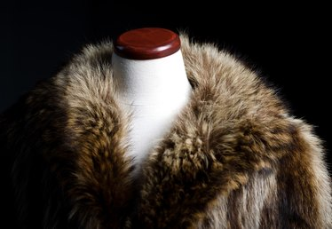 Animals Used to Make Fur Coats