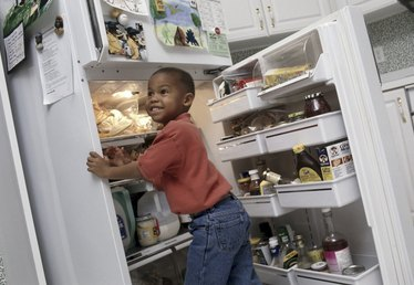 What Did People Use Before Refrigerators?