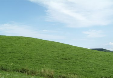 What Is Good for Cutting Grass on a Steep Slope?
