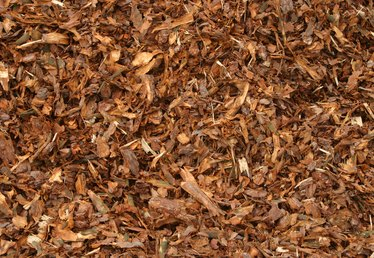 What Are the Dangers of Wood Mulch Piles?