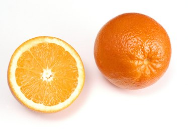Citrus Fruit Peels as an Insecticide