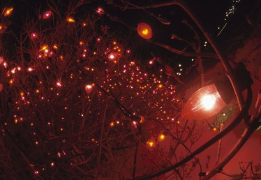 Safety of Outdoor Christmas Lights in the Rain
