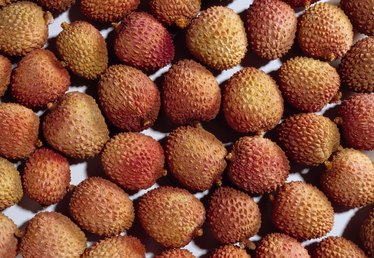 When Are Lychees in Season?
