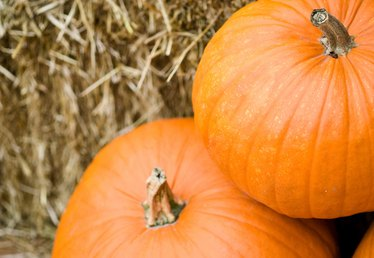 How to Distill With a Pumpkin