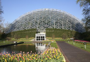 How to Get Free or Low-Cost Tickets to the Missouri Botanical Garden