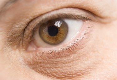 The Effects of MSM Eye Drops on the Retina