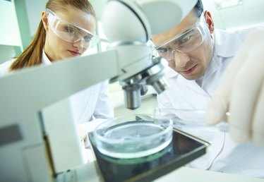 Biotechnology Ideas for a Small Business