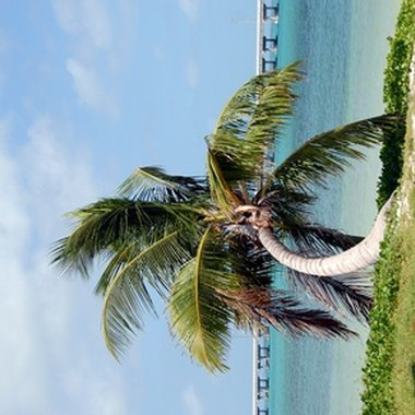 Key West, Florida, is home to sun, fun, beaches, bars and a few motels.
