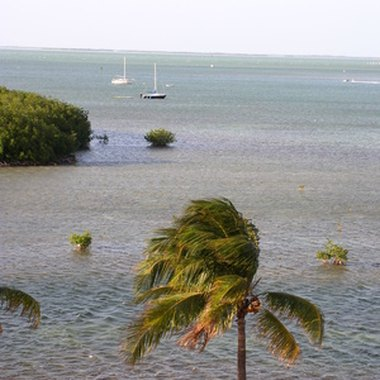 Key West water views
