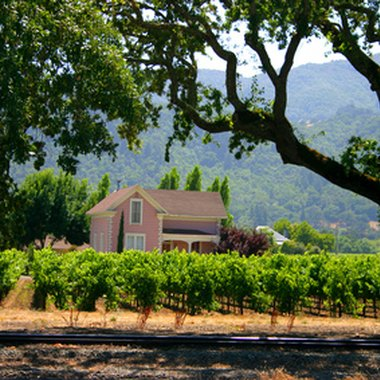 Visitors can access St. Helena's peaceful vineyards from nearby hotels.