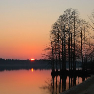 Set on Virginia's James River, Jamestown was Virginia's first colony.