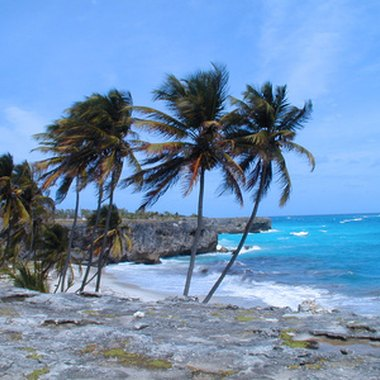 The Barbadian coast is a powerful draw for vacationing families.