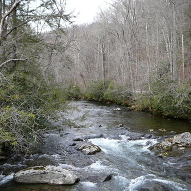 Most of Tennessee's rustic cabins are located in the Smoky Mountains.