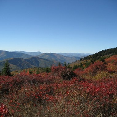 Shining Rock is the largest wilderness area in North Carolina.