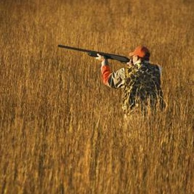 Rifle hunting is legal in portions of Ontario County, New York.