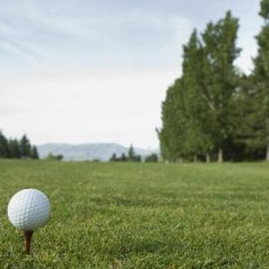 Eastchester, NY and the surrounding area is home to public and private courses.