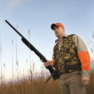 Shotgun hunting is the most effective for jackrabbits.