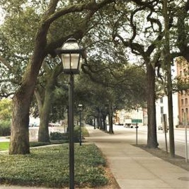 Many haunted trails in Savannah take visitors through the city and its squares.