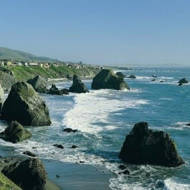 Bodega Bay is approximately 65 miles north of San Francisco.