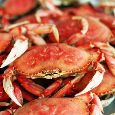 Check for local crab feast festivals if vacationing near the coast during warm seasons.