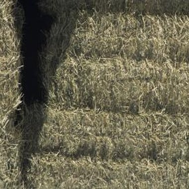 Use hay bails to build your backyard Halloween maze.