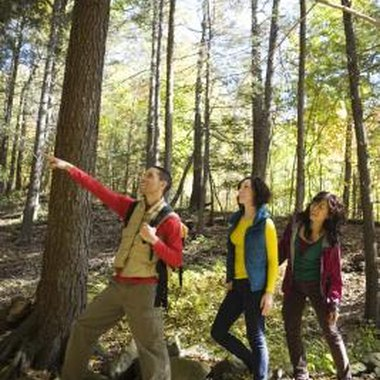 Enjoy a hike in one of the beatiful, natural areas in Illinois and Wisconsin.
