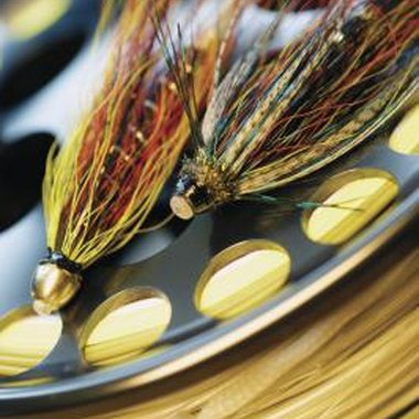 Flies, plugs and spinners are the best choice for tiger muskie in Washington.