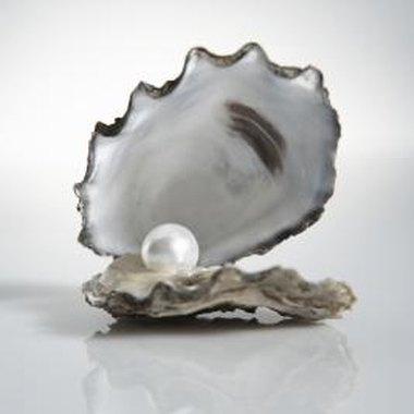 The Tennessee River is a major site for pearl diving.