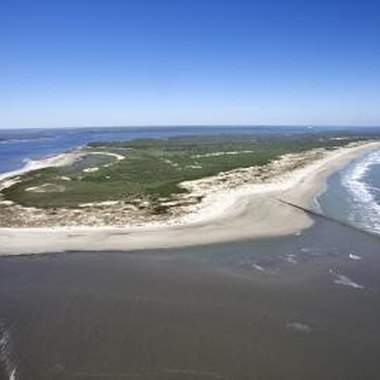 Coastal camping locations in Georgia include Cumberland Island.