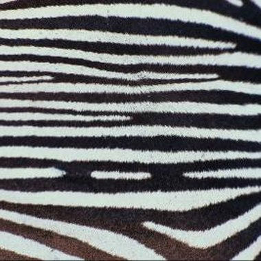 Stenciling allows you to paint zebra strips on your wood or ceramic letters