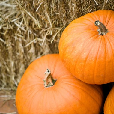 Teenagers can help decorate pumpkins for Halloween.