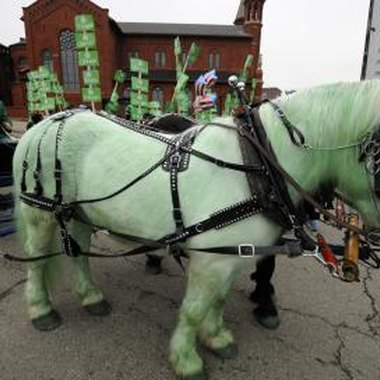 In Pittsburgh, even horses wear the green of the Irish on St. Patrick's Day.