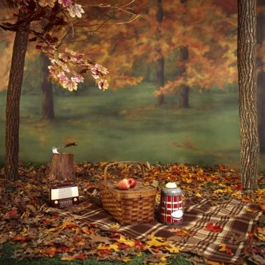 Autumn features beauty in changing leaves and weather suitable for outdoor activities like picnicking.