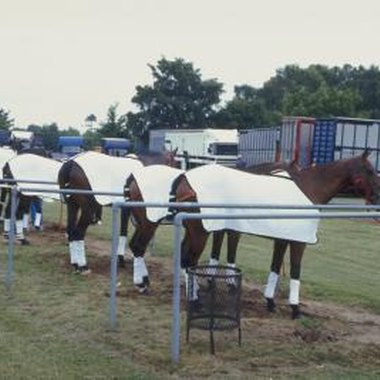 During the polo season, Sheridan attracts visitors from all over the world.