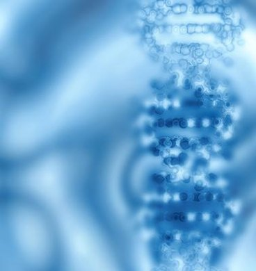 Many ethical issues surround the information contained in the DNA double helix.