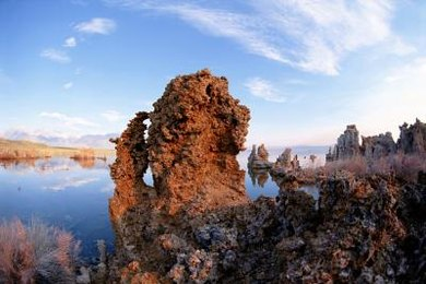 Many extremophiles live in alkali lakes and hot springs.