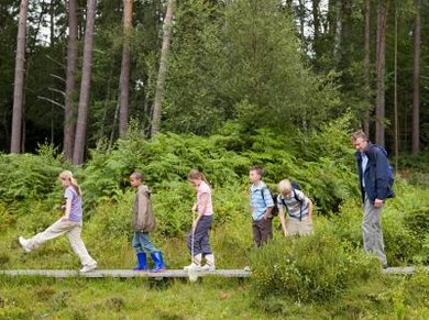 Keep young students physically active while they learn about the environment.