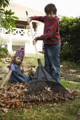 Leaf burning effects contribute to community bans and the development of yard waste recycling programs.