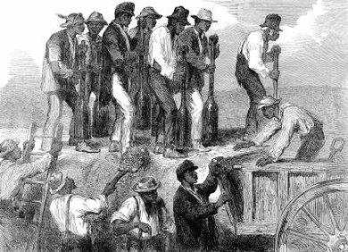 Civil rights movement (1865–1896)