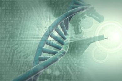 "The DNA double helix can be thought of as the cell's ""hard drive."""